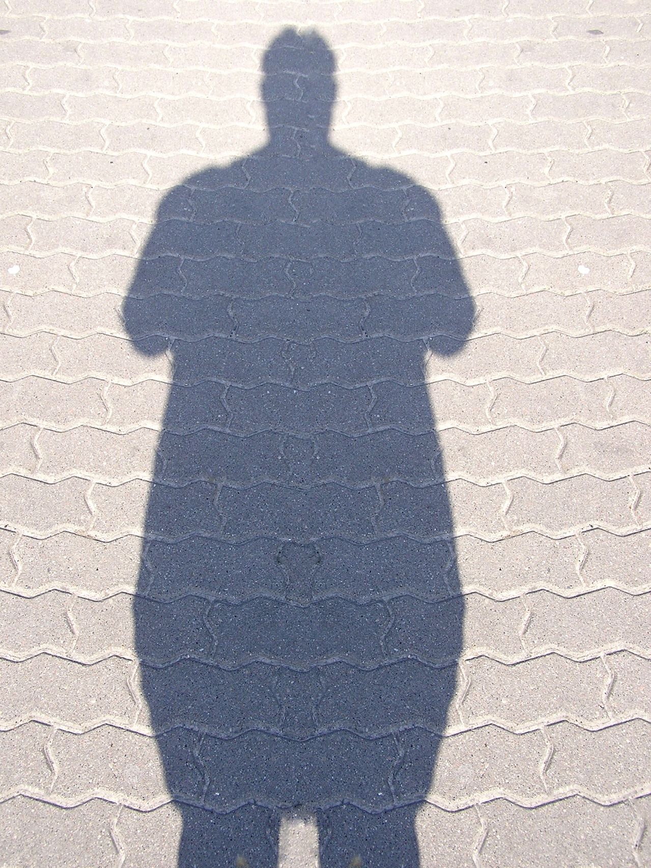 Fat shadow man 1168363 1279x1705