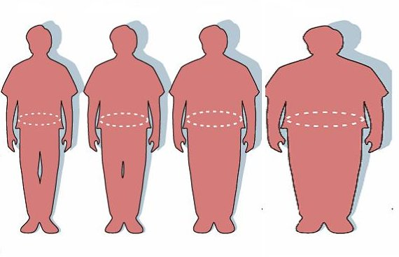 Satire obesity evolution 130338 o