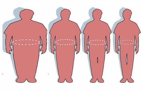 Satire obesity evolution 130338 reverse